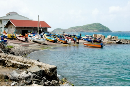 bequia_paget_farm