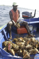 grenada_dwight-fishing_08-6
